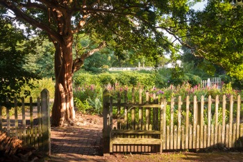 Garden 350